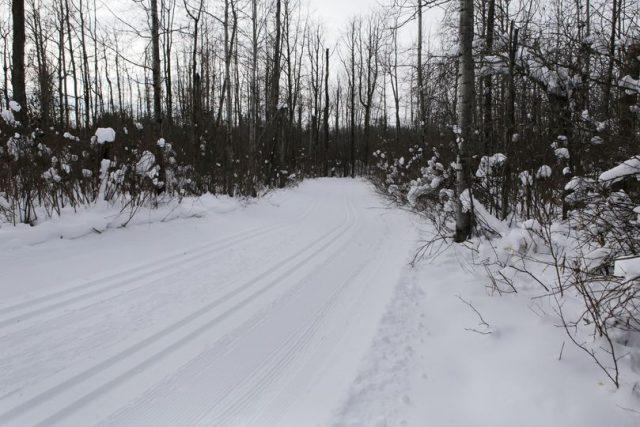 Elves Groomed the Trails